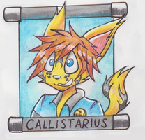 From Chap:Callistarius badge by ezioauditore97