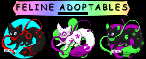 Feline Adopts -Closed- by Darketh90