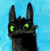 Toothless by dingo-murci