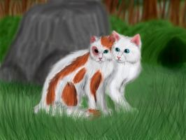 Cloudtail and Brightheart by Alisa222