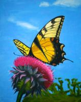 Butterfly on Thistle by macourtney