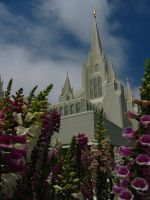 San Diego Temple and Flowers 2 by skoticus