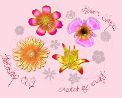 Flower custom shapes for CS2 by veredgf