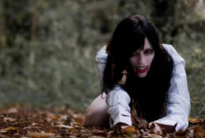 Vampire story by PhotoBySavannah