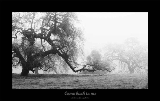 LANDSCAPE - Come Back to Me by onewordphoto