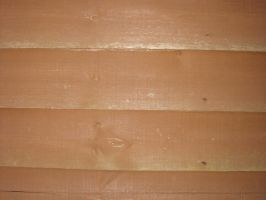 Texture Wood 2 by pictsy