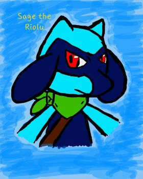 Sage the Riolu by Bluespottedfire