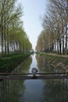 "the ""canale Vacchelli"" by fontah2"