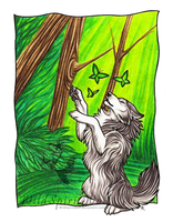 Butterflies and Wolf Commish by WildSpiritWolf