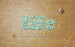 Life Cycle by roopi
