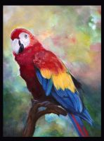 WaterColor Parrot by Chicken--Scratch