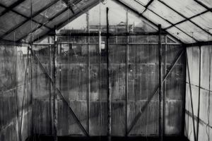 industrialized greenhouse by qinqy