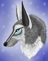 .::Wintertime::. by WhitehArts