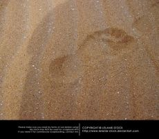Sea and Sand 004 by Lelanie-Stock