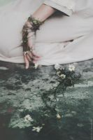 Chamomile Reverie by NataliaDrepina