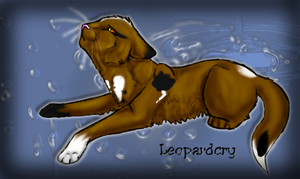 Request 1- Leopardcry by Hero-Wuff
