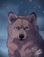 Ice eyes by TheMysticWolf