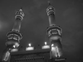 Black n White Minaret by swaseena