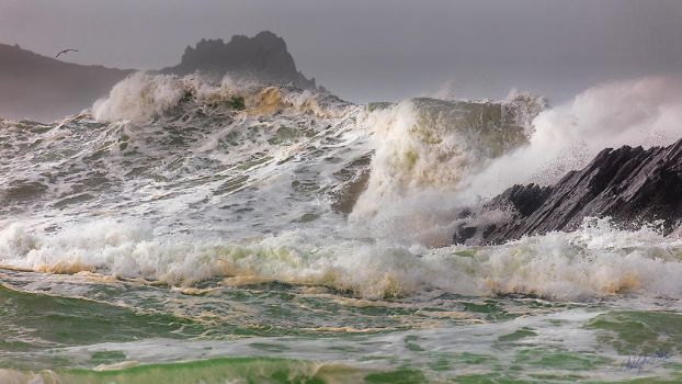 Atlantic Wildness by cprmay