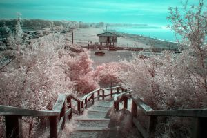 Rerik beach - Infrared by Torsten-Hufsky