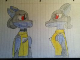 Request for ~Coolcole53 by CaitlinTheLucario