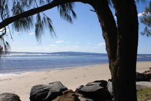 Noosa by Cogs90