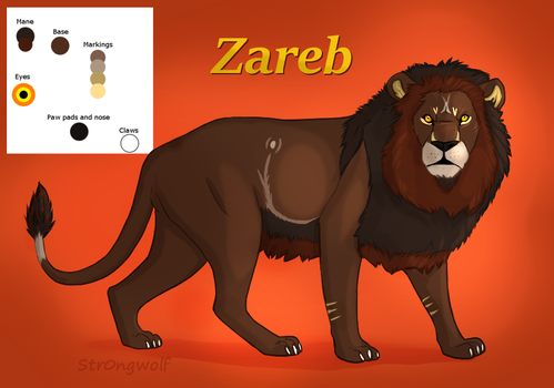 Zareb's Character by Str0ngwolf