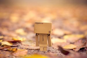 Danbo in the mist by Pamba