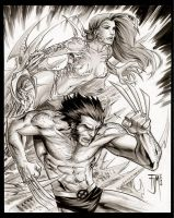 Wolverine Witchblade by manapul