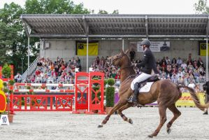 3DE Show Jumping Phase Stock 67 by LuDa-Stock