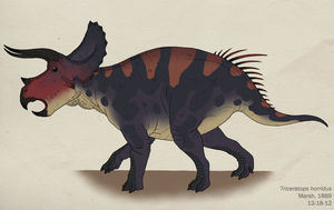 098--TRICERATOPS HORRIDUS by Green-Mamba