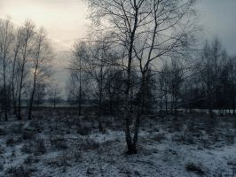Dead winter days IV by Topielica666