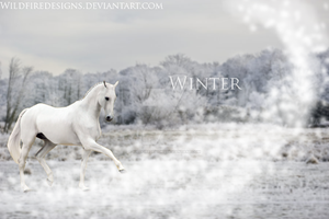 Winter by WildfireDesigns