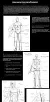 Anatomy reference-tutorial by suishou