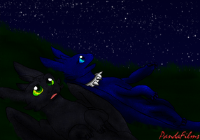 The Nightstar and The Nightflower by PandaFilms