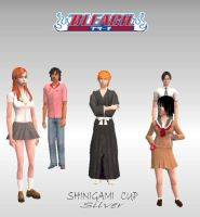 Bleach: silver shininigami cup by aviii-chan