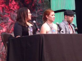 Mela Lee, Jamie Marchi, and Chris Sabat at Panel by albertxlailaxx