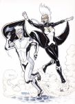 Commission: Quicksilver and Storm by micQuestion