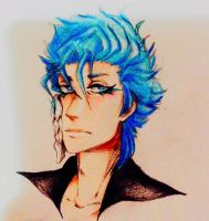 Grimmjow by luCazzl