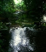 Fairy Stream Stock by RavenMaddArtwork