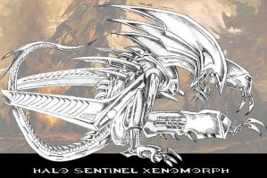 Halo Sentinel Xenomorph by drskytower