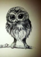 Inky owl. by AutumnAshley5