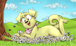 Daisy Patch by Rainy-bleu