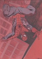 Spidey and the City by JohnReynolds