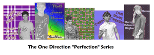 The One Direction Perfection Series by iluvlouis