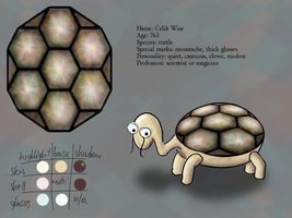 Trutle character design sheet by dwsel