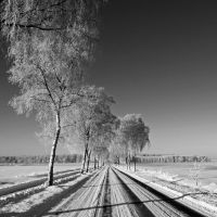 another road in winter by augenweide