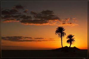 Sahara silhouette by mgm-photo