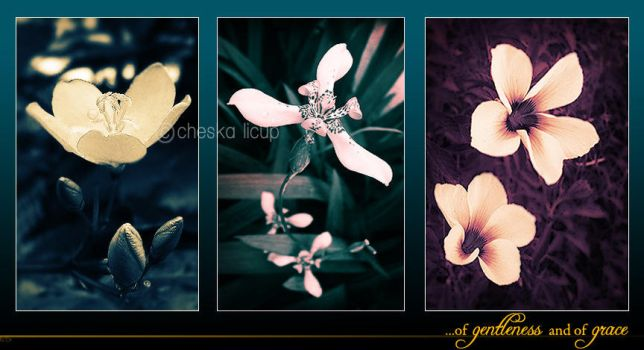 of gentleness and of grace by chezzka