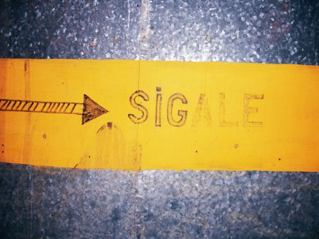 Sigale by Moito